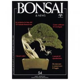 Bonsai & news n.  54 - Luglio-Agosto 1999