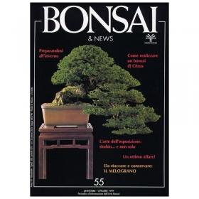 BONSAI & news n.  55 - Settembre-Ottobre 1999