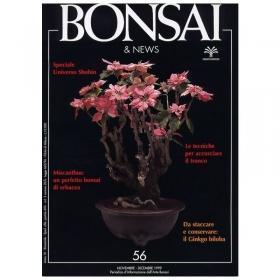 BONSAI & news n.  56 - Novembre-Dicembre 1999