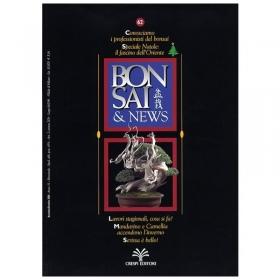 Bonsai & news n.  62 - Novembre-Dicembre 2000