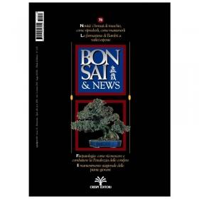 BONSAI & news n.  78 - Luglio-Agosto 2003