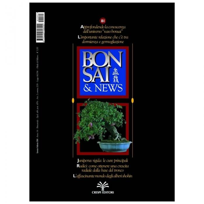 BONSAI & news n.  81- Gennaio-Febbraio 2004