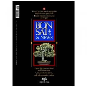 BONSAI & news n.  82 - Marzo-Aprile 2004