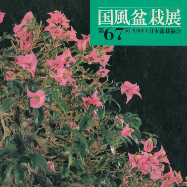 Kokufu Bonsai Exhibition catalogue n° 67 - Anno 1993 Vintage Edition