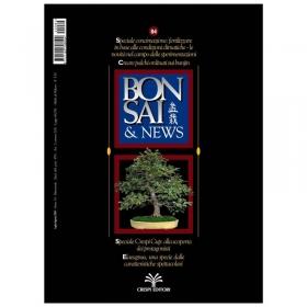 BONSAI & news n.  84 - Luglio-Agosto 2004