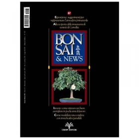 BONSAI & news n.  87 - Gennaio-Febbraio 2005