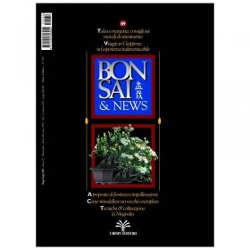 BONSAI & news n.  89 - Maggio-Giugno 2005