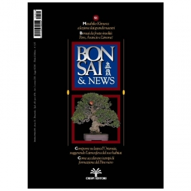 BONSAI & news n.  91 - Settembre-Ottobre 2005