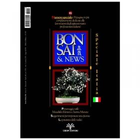 BONSAI & news n.  93 - Gennaio-Febbraio 2006