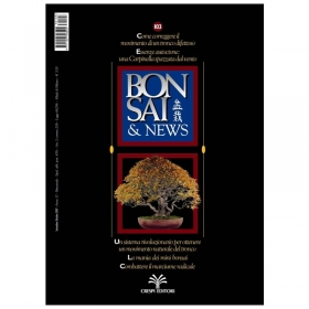 BONSAI & news n. 103 - Settembre-Ottobre 2007