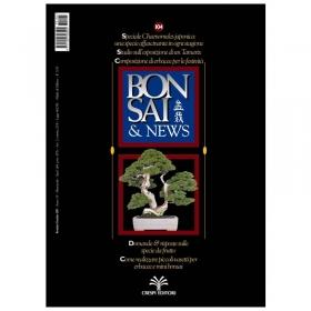Bonsai & news n. 104 - Novembre-Dicembre 2007