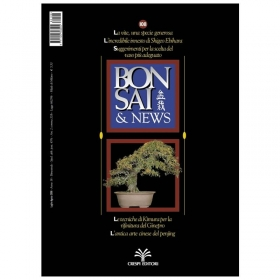 BONSAI & news n. 108 - Luglio-Agosto 2008