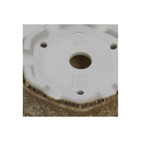 Pot 9,3 cm hexagonal - Shuiming