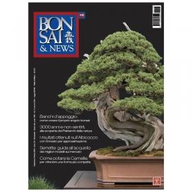 BONSAI & news n. 115 - Settembre-Ottobre 2009