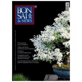 BONSAI & news n. 118 - Marzo-Aprile 2010