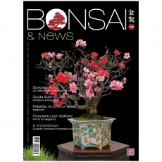 BONSAI & news 178 - Mars-avril 2020