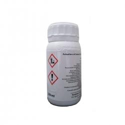 Jin liquide Bonjinsan - 250 ml
