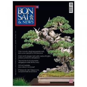 BONSAI & news n. 125 - Maggio-Giugno 2011
