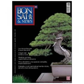 BONSAI & news n. 127 - Settembre-Ottobre 2011