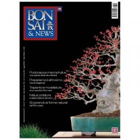 BONSAI & news n. 128 - Novembre-Dicembre 2011