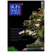BONSAI & news 130 - Marzo-Aprile 2012