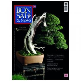 BONSAI & news n. 134 - Novembre-Dicembre 2012
