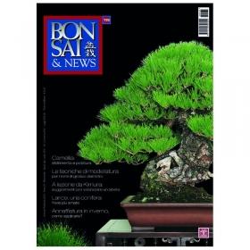 BONSAI & news n. 135 - Gennaio-Febbraio 2013