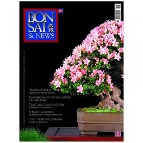BONSAI & news n. 137 - Maggio-Giugno 2013