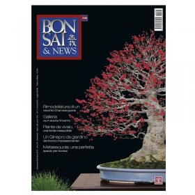 BONSAI & news n. 140 - Novembre-Dicembre 2013