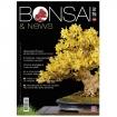 BONSAI & news 148 - Marzo-Aprile 2015