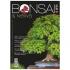 BONSAI & news n. 156 - Luglio-Agosto 2016