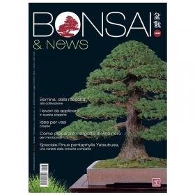 BONSAI & news n. 158 - Novembre-Dicembre 2016