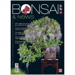 BONSAI & news 179 - Mai-Juin 2020