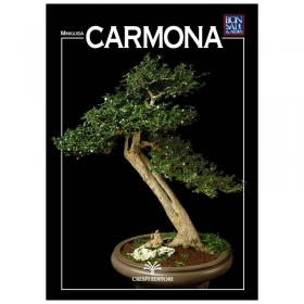 Carmona - Miniguida BONSAI & news