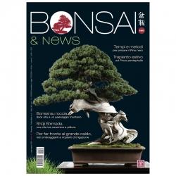 BONSAI & news 180 - Juillet-Aout 2020