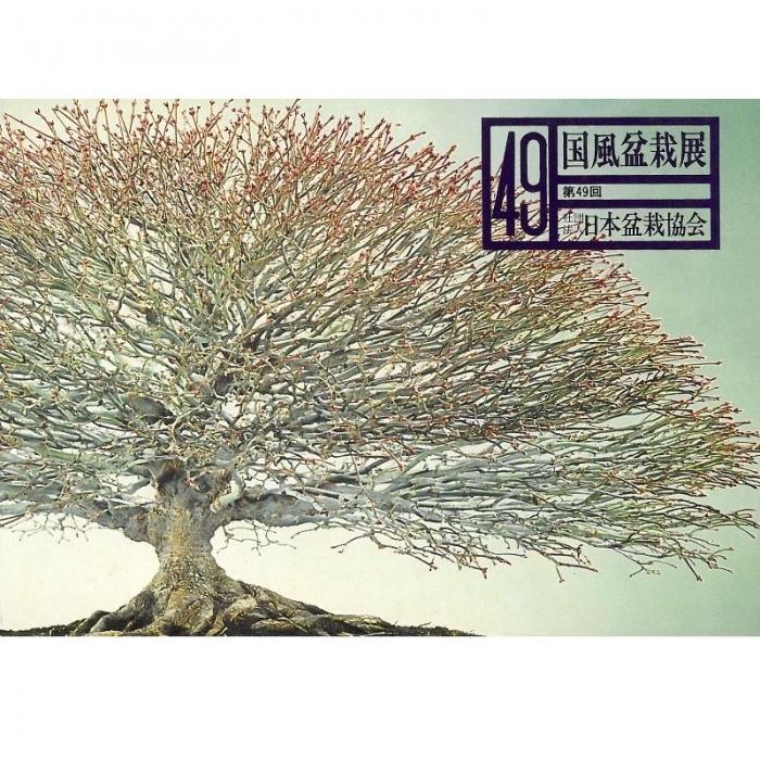 Catalogo Kokufu Bonsai Exhibition 49 - 1975 Vintage Edition
