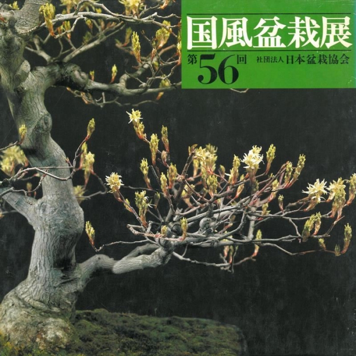 Catalogo Kokufu Bonsai Exhibition 56 - 1982