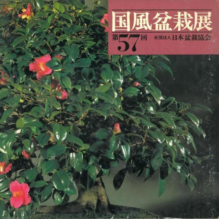 Catalogo Kokufu Bonsai Exhibition 57 - 1983