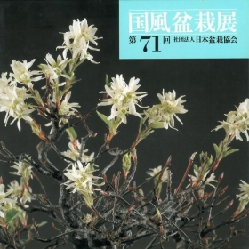 Catalogo Kokufu Bonsai Exhibition 71 - 1997 - Vintage Edition