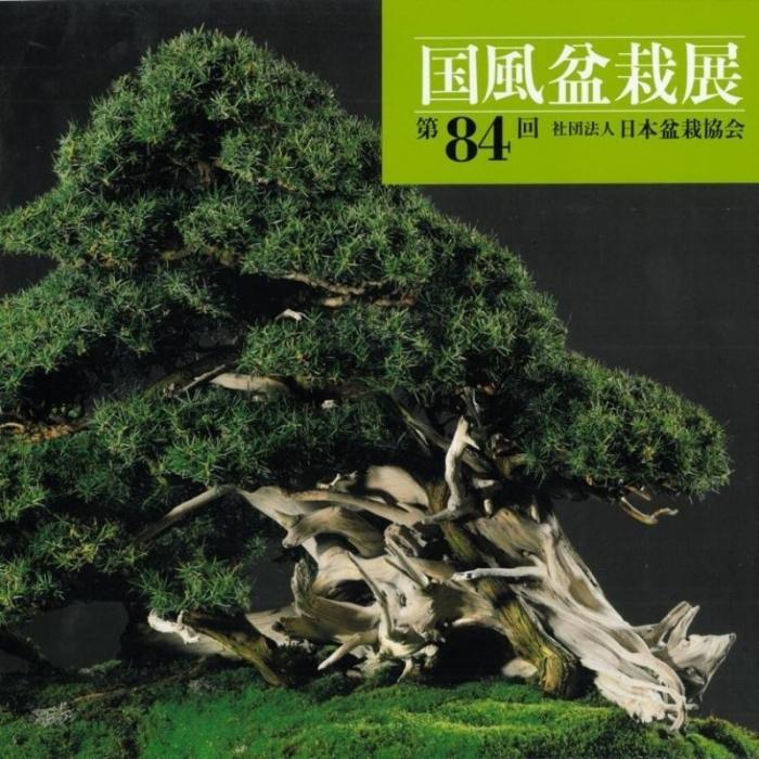 Catalogo Kokufu Bonsai Exhibition 84 - 2010