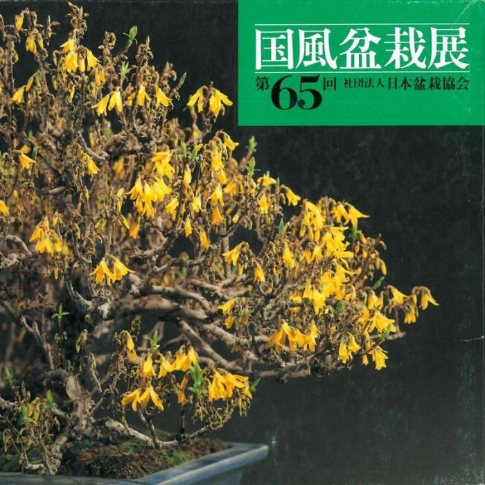 Catalogo Kokufu Bonsai Exhibition n° 65 - Anno 1991 Vintage Edition