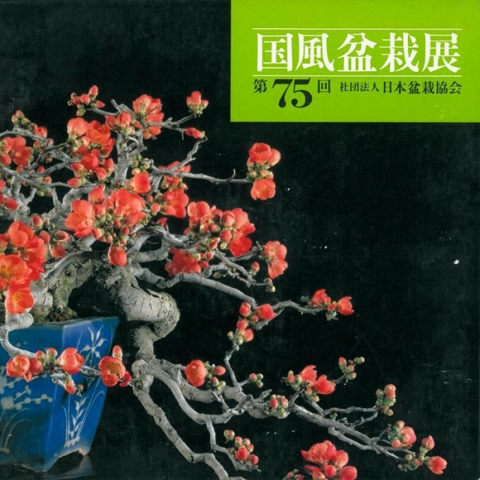Catalogo Kokufu Bonsai Exhibition n° 75 - Anno 2001