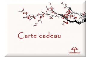 GiftCard-Prunus-FR