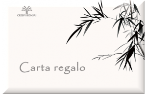 GiftCard-Bambu-IT