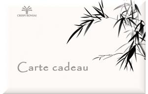 GiftCard-Bambu-FR
