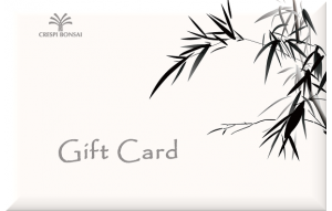 GiftCard-Bamboo-EN