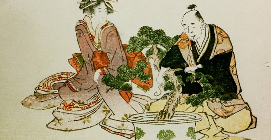 Bonsai: history and philosophy