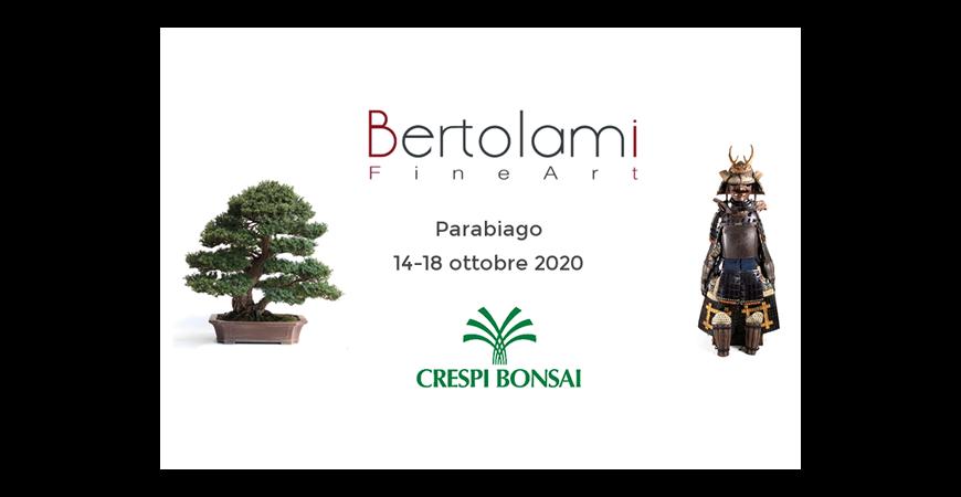 "Va in scena a Parabiago ""Arte asiatica e bonsai"""