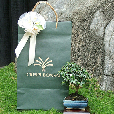Your bonsai guest gifts shipped in all Italy